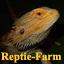 Reptie-Farm
